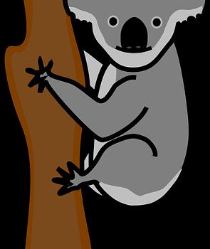 Koalaklasse