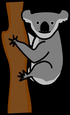 koala-310188__480